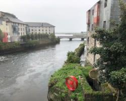 【スタッフが実際に訪問しました!】アイルランドの2言語の首都!ゴールウェイ(Galway)!
